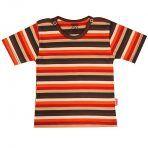 تی شرت پسرانه آستین کوتاه پاریز (Pariz) طرح رنگی رنگی