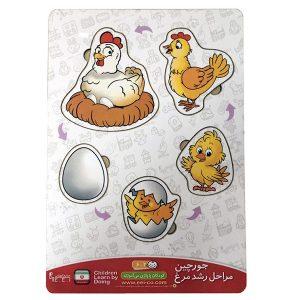 اسباب بازی جورچین (پازل) مراحل رشد مرغ
